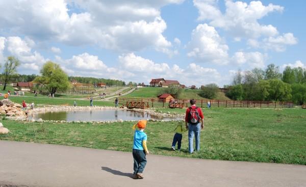 На территории парка