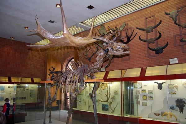 Древний лось