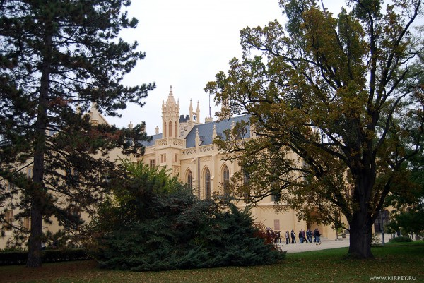 Замок из-за ветвей