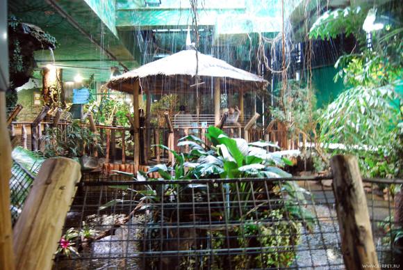 Тропический зал
