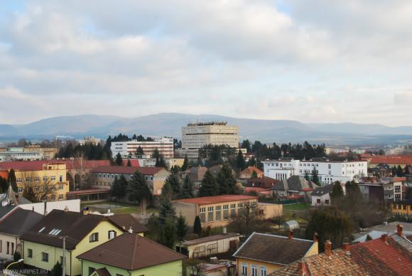 Вид на городскую больницу
